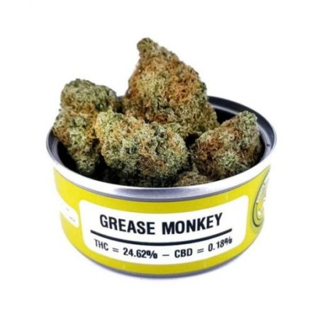 Space Monkey Meds Grease Monkey