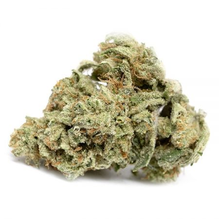 hawaiian-snow marijuana